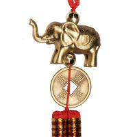 Čínská mince 23 mm se slonem Čína